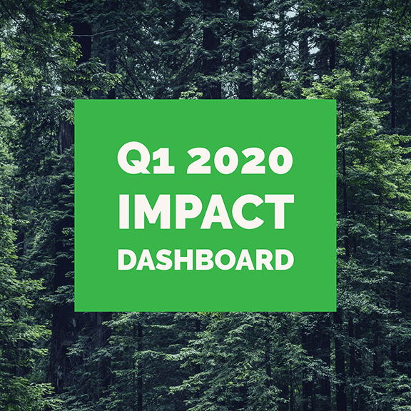 Impact Dashboard – Q1 2020