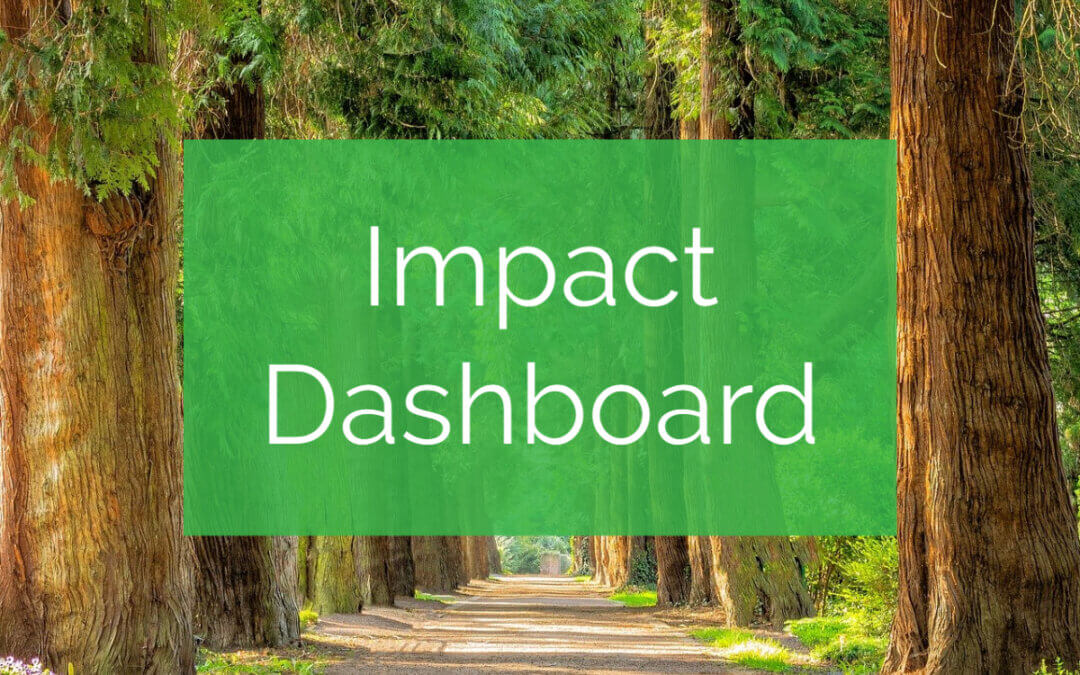 Greenworks Lending Impact Dashboard – Q1 2021